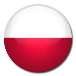 Polish windows 8.1 Microsoft office Professional 2013 Polish keyboards systran translator translation software Adobe CC