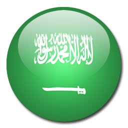 Arabic windows 8.1 Microsoft office professional 2013 Arabic keyboards systran translator translation software Adobe CC