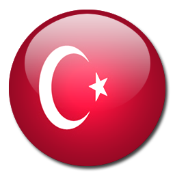 Turkish windows 8.1 Microsoft office Professional 2013 Turkish keyboards systran translator translation software Adobe CC